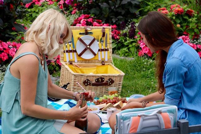 海外のピクニック